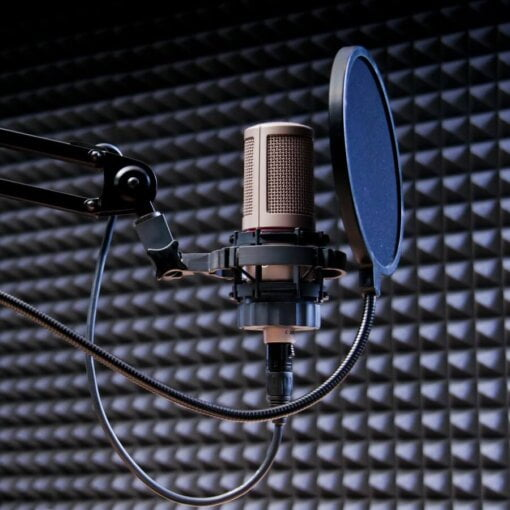 Pop Filter - Global Voice Acting Academy